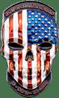 3D Skull Translucent