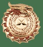 Marine Security Guard Detachment Vietnam Side 2