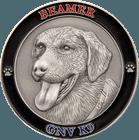 3D K9 Coin