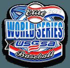 USSSA World Series Pin