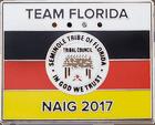 Seminole Tribe of Florida Flag Pin