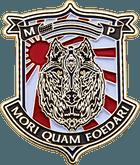 MCAS Iwakuni Marine Coin