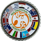 TFEG Command Team Multi-National Observers Side 2